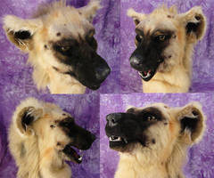 Hyena Head by Beetlecat