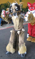 Beast Fursuit Costume by Beetlecat
