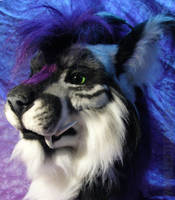 Purple and Blue and Beetlecats by Beetlecat
