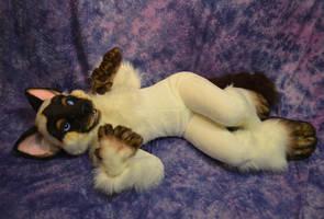 Siamese Cat Fursuit by Beetlecat