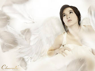 Angel by StevenZ