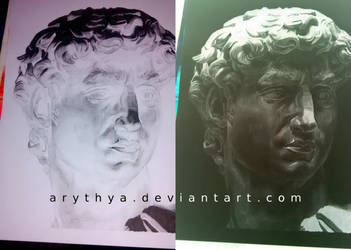 David - Inverted Drawing by Arythya