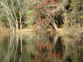Still Waters by tango793