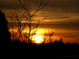 Sunrise by Tigerente-in-love