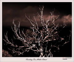 Crouching Tree, Hidden Island by eehan