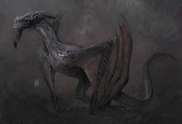 Dragon- by ARASHRADKIA