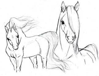 Magic Horses Sketsh by Arabis-Wild-Horses