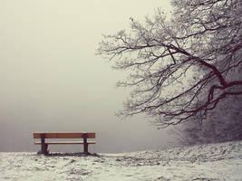 Winter Wonderland II by abloom