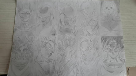 Goku vs everyone Dragon Ball Super by DragauneBauleZaide