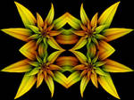 Four Flowers by Thelma1