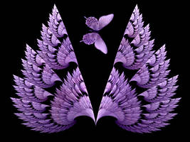 Matching Wings by Thelma1