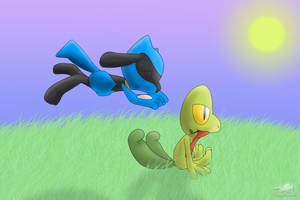 Gift - Riolu used pounce by Dragon-Minded