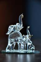 Elefants by tsubaki77