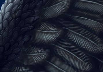 Bosper Winterkalt feathers by AThousandRasps