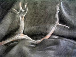 Antler Redux by AThousandRasps