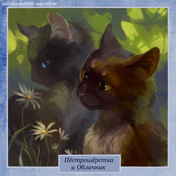 Cloudspots and Dapplepelt by Romashik-arts