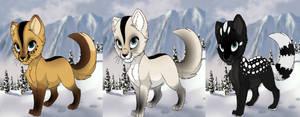 The Triplets by shewolfzoroark