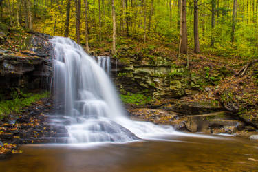 Dry Run Falls, Loyalsock State Forest by kyleshikes