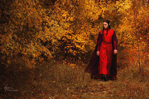 Lord of autumn. Beleriand. by Fealin-Meril