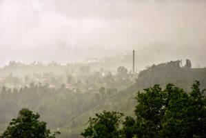 Fog On The Tea Fields 5. by bigzoso