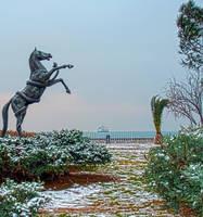 Rare Snow In Izmir 2. by bigzoso