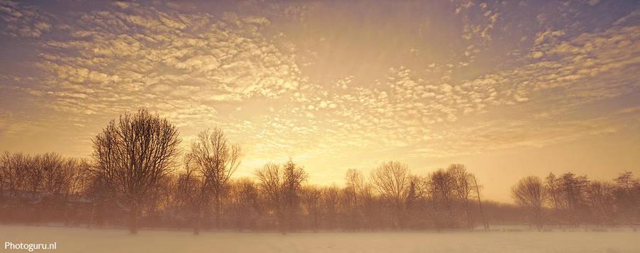 Wintermist by Guidonr1