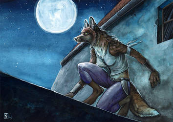 Midnight's Daughter by Nimrais