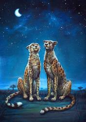 Watching The Stars by Nimrais