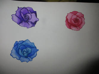 Water color roses by Queen-of-darkness104