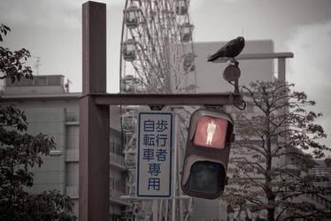 Raven at Dusk by unifx