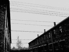 Auschwitz 2 by CocoaDesert