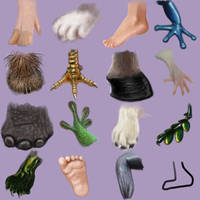 feet and feet and feet and ... by Trutze