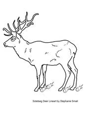 FREE Faulted Sotetseg Deer Lineart by StephanieSmall