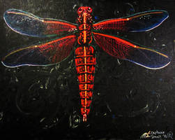 Red Dragonfly Bug Insect Orange Yellow Gold Black by StephanieSmall