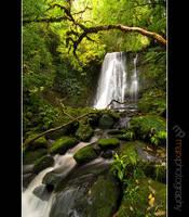 Matai Falls by mark-flammable