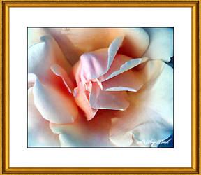Flower 2947 BACD by SirIvyPink