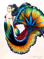 Betta Fish by joannashen