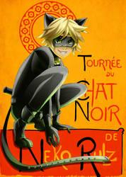 Miraculous Chat Noir by neko-rulz