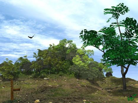Birchtop Hill by Silverwolf2006