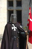 Hospitalier Knight 3 by chavi-dragon