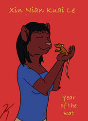 Chinese New Year 2008 by kayngi