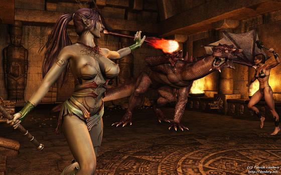 Dragon battle by Dendory