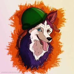 Husky in a helmet by JuliaLisitsina