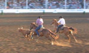 rodeo by brokk66