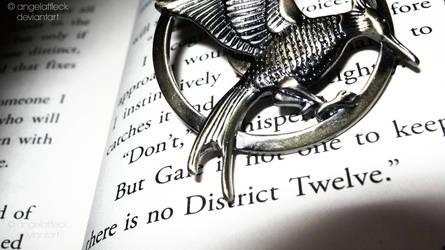 No District Twelve by angelaffleck