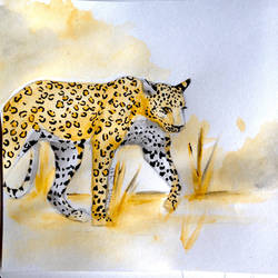 Invitation set : Leopard by LaFilleEtoile