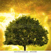 beautiful-tree-wallpaper premade background by nishagandhi