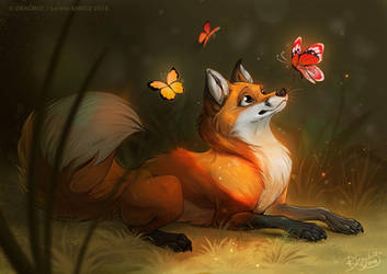 Friendly Butterflies by Dragibuz