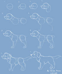 How I Draw A Cartoon Dog by Jaimep
