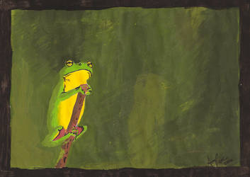 Frog by amy430